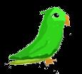 Green Parakeet ##STADE## - coat 1340000003