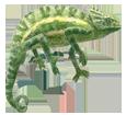 Chameleon ##STADE## - coat 72